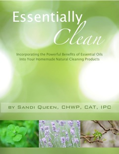 Essentially Clean - eBook