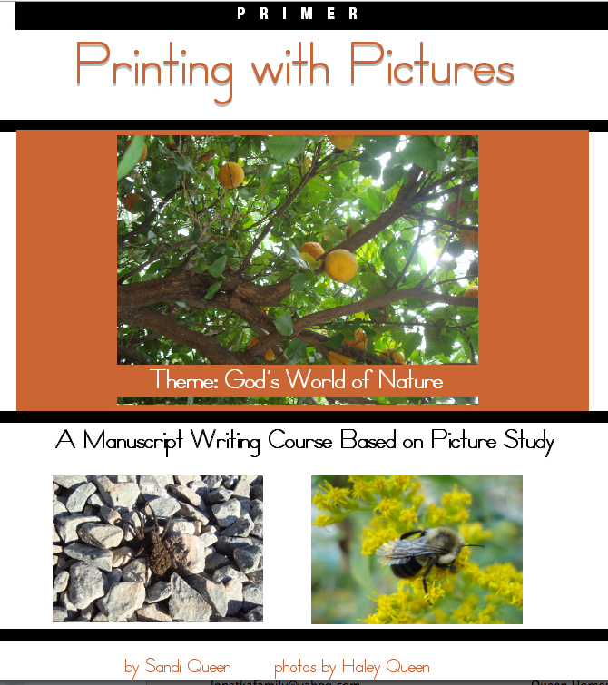 Printing with Pictures: Primer - Ebook