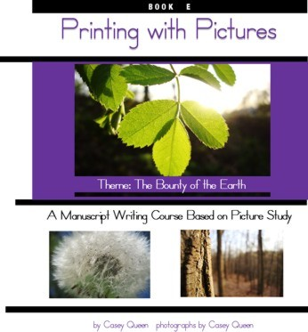 Printing with Pictures Book E